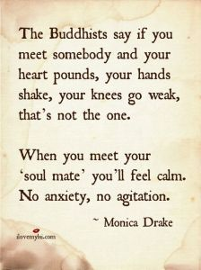 meet soul mate
